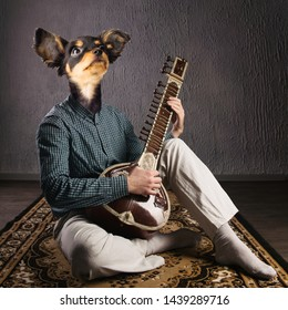 Psychedelic dog plays sitar. Funny collage. Animal protection concept. Image