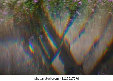Psychedelic vivid abstract rainbow prism defraction effect on the flower background