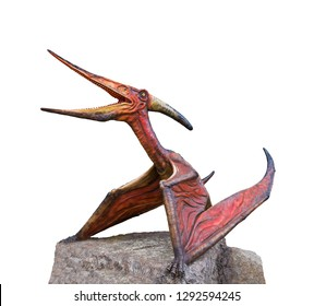 Pteranodon is a genus of Pterosaur and lived during the late Cretaceous period, stand on the stone isolated on white background with clipping path