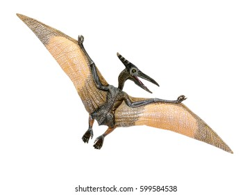 Pterosaur dinosaur toy on white background