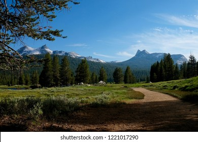 Ptolemy Meadows in Yosemite National Park, California.