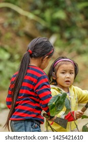 Pu Luong Nature Reserve, Thanh Hoa / Vietnam - March 10 2019: Pu Luong Nature Reserve, Thanh Hoa / Vietnam - March 10 2019: Little girls cutting leaves of branches.