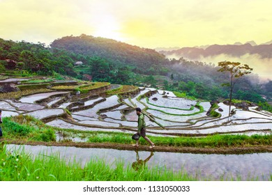 PU LUONG, THANH HOA, VIETNAM, July 8th, 2018: Terraced rice field in water season in Pu Luong, Thanh Hoa, Vietnam.