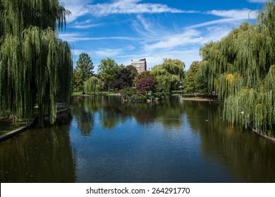 Public Gardens in Boston
