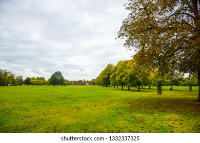 Public green park during autumn season with green field surrounded by trees in London, United Kingdom