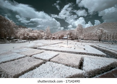 Public Park At Bangkok ,Thailand taken in Near Infrared