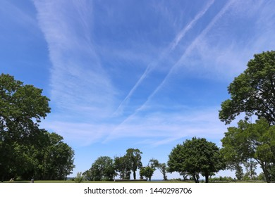 Public park in the city with green trees and airplane marks on the sky