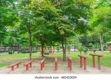Public Park in Day light Time at Bangkok ,Thailand