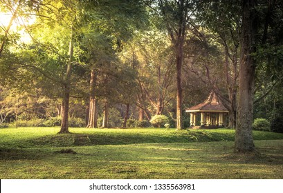 Public park scenery landscape with gazebo sunset sunlight in Royal Garden Peradeniya in Sri Lanka nearby Kandy surroundings