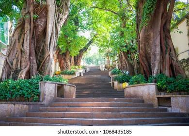 The Public park at Taipa Village, Macau