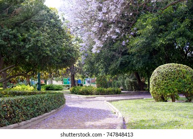 A public park in Valencia city (Spain)