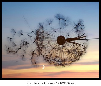 Public sculpture of dandylion clock against evening sky