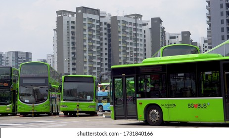 Public Transport - Green Buses at Depot in Singapore - August, 2019