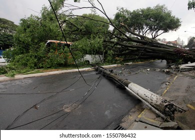 A public transportation bus gets hit by a tree and a pole that fell during a thunderstorm in Sao Paulo, Brazil.