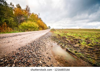 Puddle by a dirt road with small pebbles in the fall with trees in beautiful autumn colors