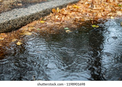 Puddle water on wet street