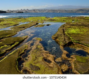 Puddles of sea water at low tide and city, The confital, Las palmas of Gran canaria