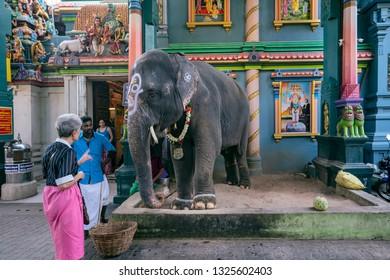 Puducherry, Pondicherry, February, 19,2019 ,Arulmigu   Manakula   Vinaygar old stone  Hindu temple, tourist attraction for elephant blessing, Puducherry,India,Asia
