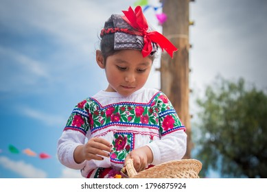 Puebla, Mexico, 08/02/2018, Mexican indigenous girl, dancing in festival of the town, Atlixcayotl traditions and Mexican folklore, dressed in colorful hand-embroidered costumes