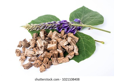 Pueraria and dried Chai Ge root