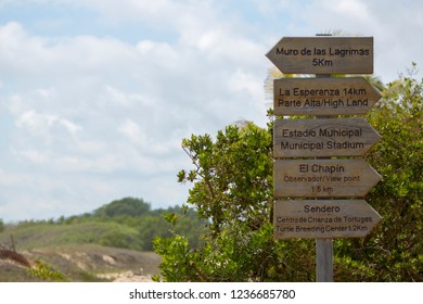 PUERTO AYORA, ECUADOR - FEBRUARY 13/2015: Directional wooden signs giving directions to different points of interrest on Isla Isabela. Galapagos Islands.