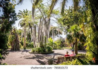 Puerto de la Cruz - Jardin Botanico