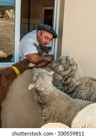 PUERTO MADRYN, ARGENTINA - DECEMBER 13: Argentinean farmer with their animals on the farm near Puerto Madryn, Patagonia, Argentina at December 13, 2012.