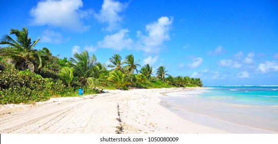 Puerto Rico White sandy beach with turquoise blue Caribbean water and coconut palms