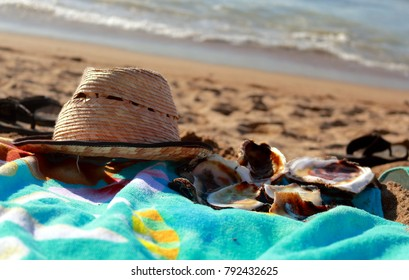 Puerto Vallarta, Jalisco/Mexico = January 12, 2018:  Lazy afternoon at the beach collecting oyster shells