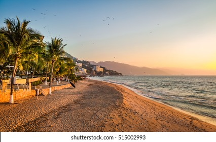 Puerto Vallarta sunset and palms - Puerto Vallarta, Jalisco, Mexico