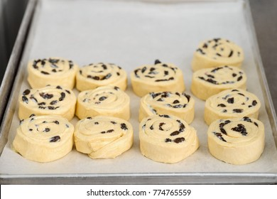 Puff pastry swirls with raisins. Semi-finished homemade goods before baking in oven.