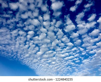 Puffy white clouds create a unique pattern with a deep blue sky backdrop on a sunny afternoon.