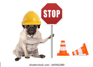 pug dog with yellow constructor safety helmet and red stop sign on pole, isolated on white background