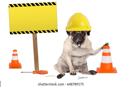 pug dog with yellow constructor worker safety helmet and cone, plus warning sign on wooden pole, isolated on white background