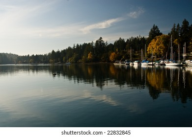 Puget Sound marina in the fall
