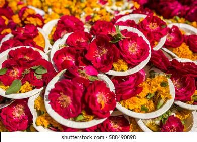 Puja flowers offering during Holi celebration in Vrindavan, India