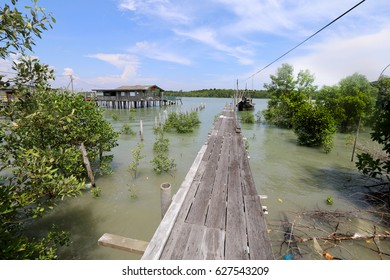 PULAU KETAM, MALAYSIA - APRIL 23, 2017: A narrow wooden jetty within the mangroaves in Pulau Ketam fishing village, located on the outskirts of Kuala Lumpur, Malaysia.