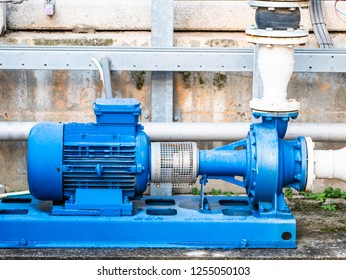 pump for high flow water circulation in a small industrial cooling circuit, flanged coupling with elastic coupling