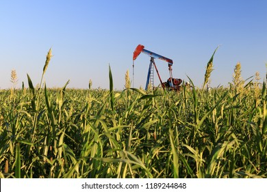 pump jack and agriculture