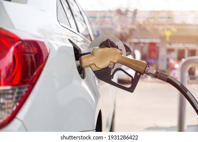 Pumping gasoline fuel in car at gas station.concept Travel and transportation.