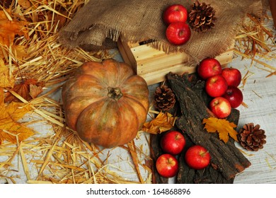Pumpkin and apples with bark and bumps on wooden background