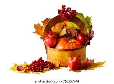 Pumpkin and apples in wooden basket isolated on white background
