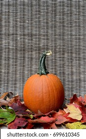 Pumpkin in bed of Fall leaves background