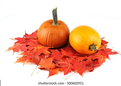 pumpkin and colorful foliage leaves isolated on white background