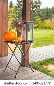 Pumpkin in the garden in autumn