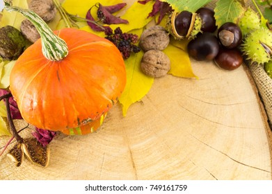 Pumpkin with hazelnuts, chestnuts and walnuts, autumn products