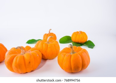 pumpkin isolate on white background with copy space , halloween composition