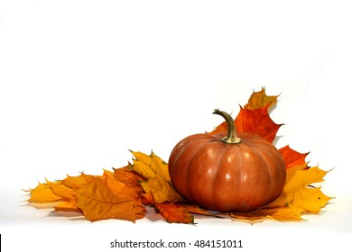 Pumpkin and leaves isolated on white background