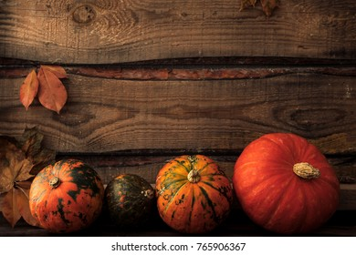 pumpkin with leaves, space for text. seasonal greetings, autumn fall holidays. harvest time. cozy mood