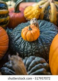 Pumpkin on wooden table / halloween .